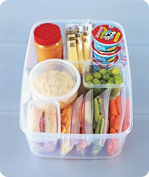 snack portions for fridge