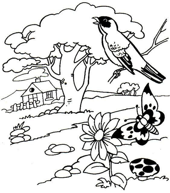 Dibujos Para Colorear La Primavera