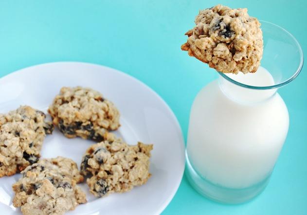 oatmeal raisin 048