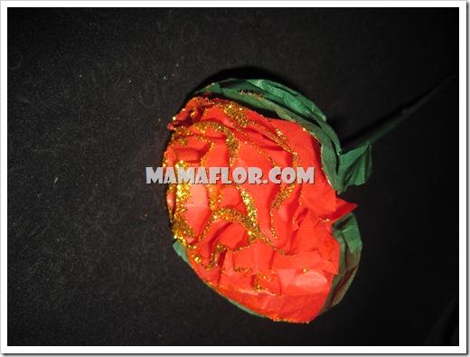 mamaflor-3091