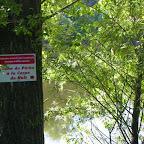 Loire rive droite aux Rompeys, à Marclopt photo #1199