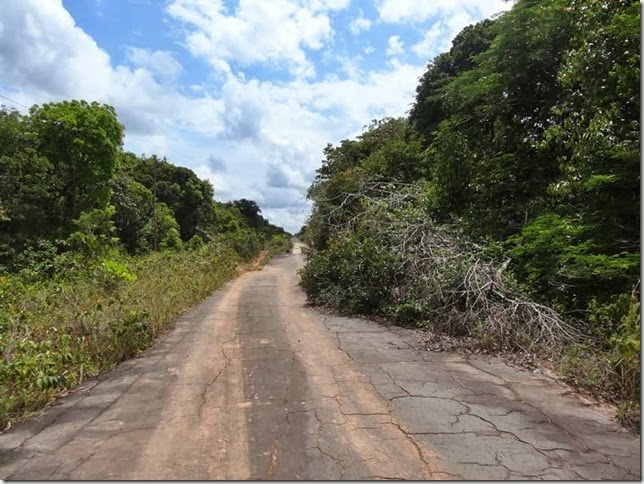 BR-319_Humaita_Manaus_Day_3_DSC05578