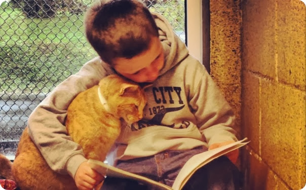 kids-reading-to-cats
