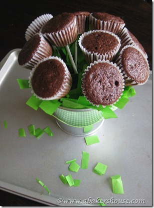 Un-iced cupcakes