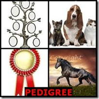 PEDIGREE- 4 Pics 1 Word Answers 3 Letters