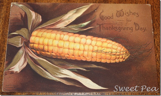 Thanksgiving Post Card1