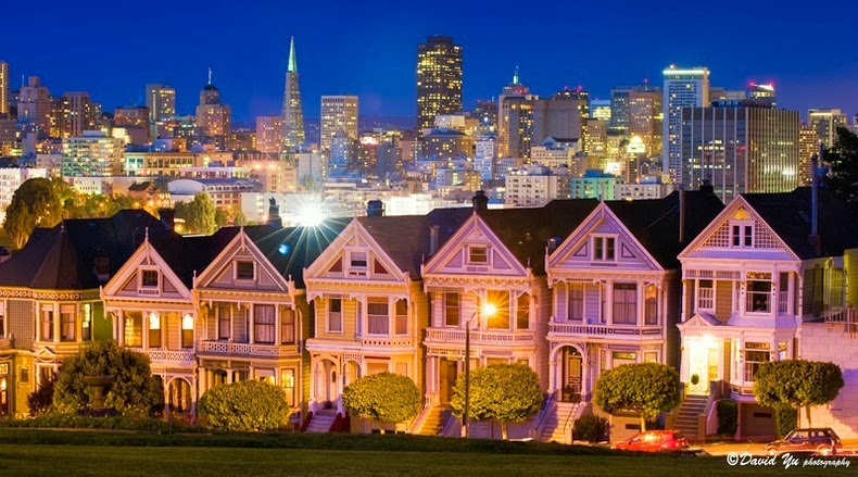 painted-ladies-6