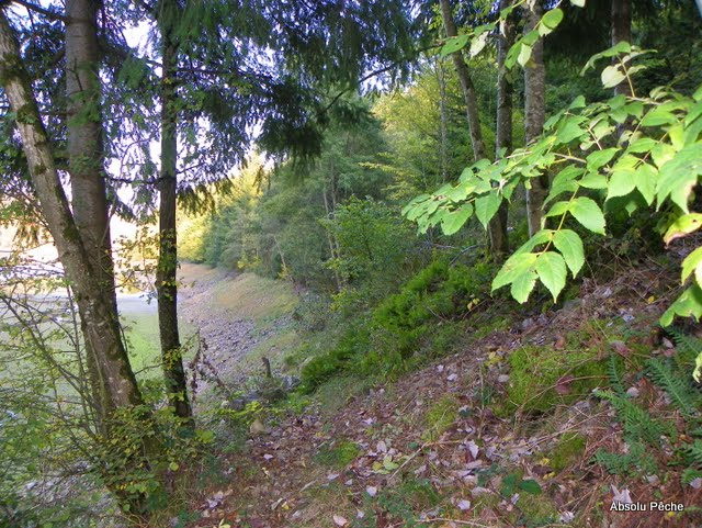 Barrage de Joux photo #617