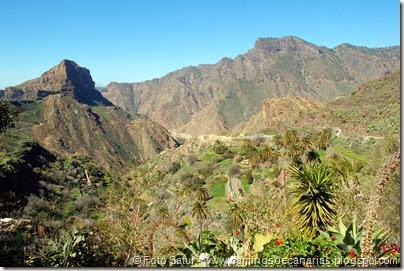 7580 El Aserrador-Vega Acusa(Mesa Junquillo y Montaña Altavista)