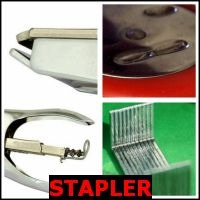 STAPLER- Whats The Word Answers