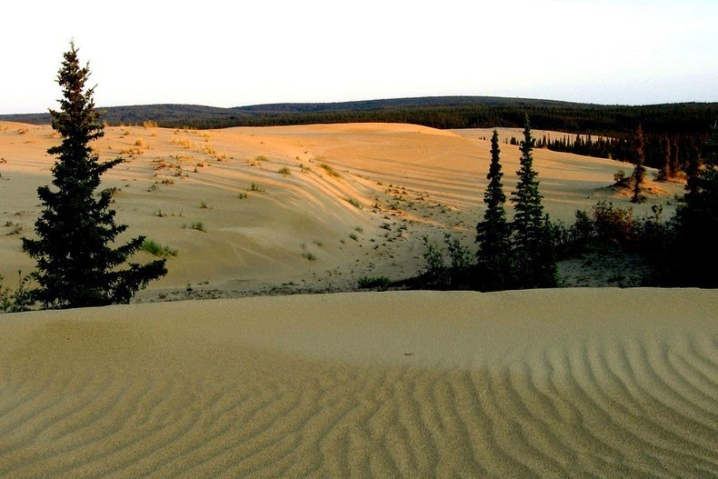 great-kobuk-sand-dunes-4
