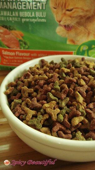 Dry Cat Foods To Avoid