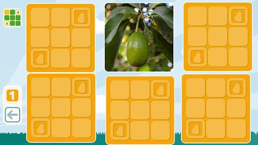Free Fruits Matching Game