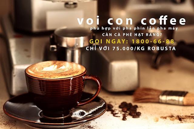 Chuyên Cung cấp cà phê hạt ngon giá rẻ toàn quốc
