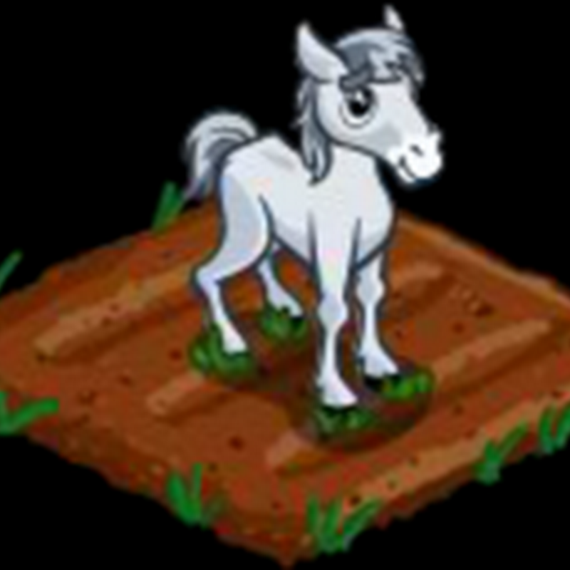 Stallion Flower: A Fools crop by Farmville