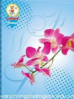 Tập học sinh Vĩnh Tiến VIBOOK  Thế giới hoa