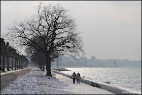 Lac Léman Genève - Glace-5.jpg