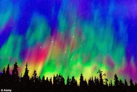 Aurora Boreala in Alaska