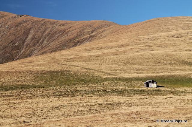 Munții Iezer-Păpușa - Şaua Grădișteanu