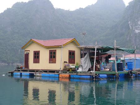 55. sat plutitor Halong Bay.JPG