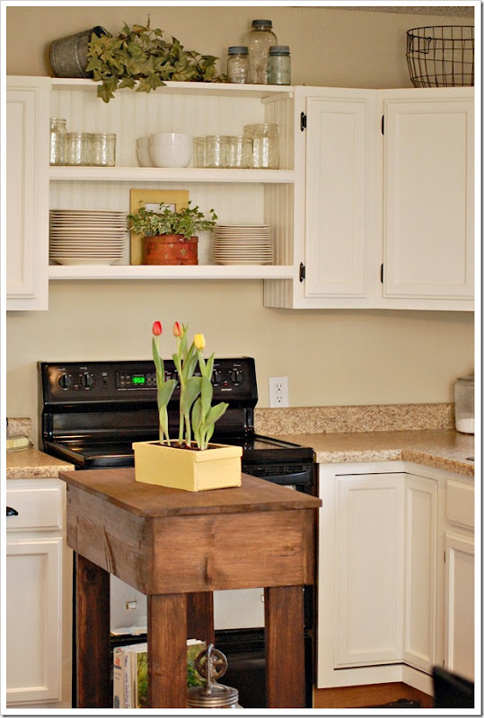wood for kitchen cabinets what is the best sarahs build a kitchen island 2263