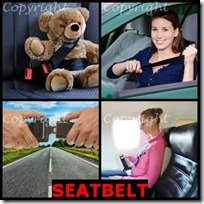 SEATBELT- 4 Pics 1 Word Answers 3 Letters
