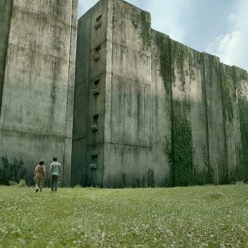 "Creating the ""Maze Runner"" World"