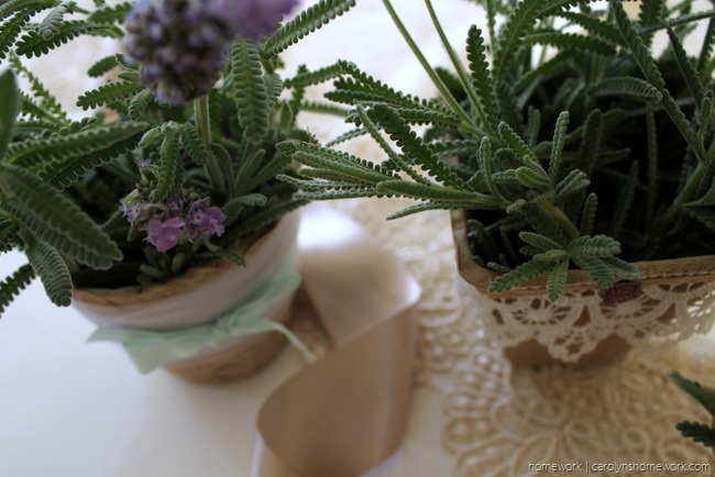 Embellished Peat Pot Table Favors - homework (1)