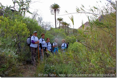 7616 Arteara-San Fernando(Barranco Fataga)