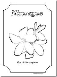Flor de Sacuanjoche 1
