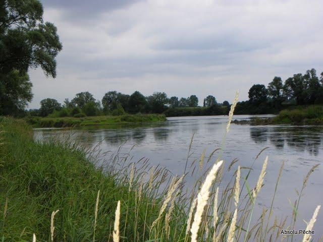 Loire à l'embouchure de l'Aix photo #852