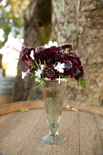 ibb-1320670871 fleurs de france