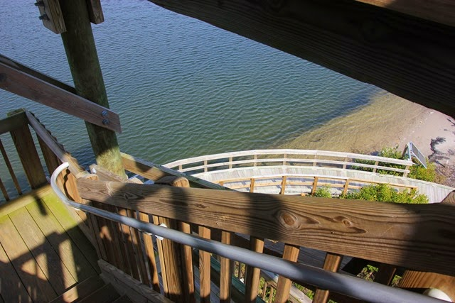 Robinson Preserve Observation Tower2