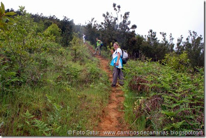 7962 Circular a Firgas R3-Pico del Rayo)