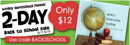 2 day planner sale green extra
