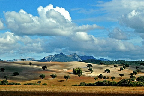 Andalusian-landscape