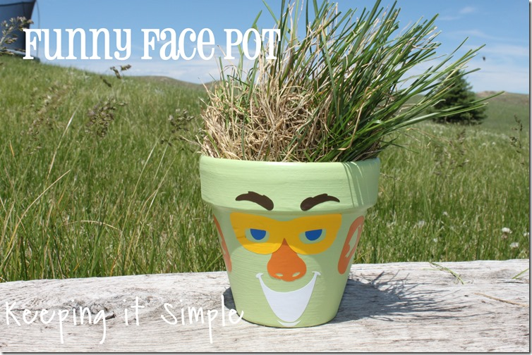 funny face pot