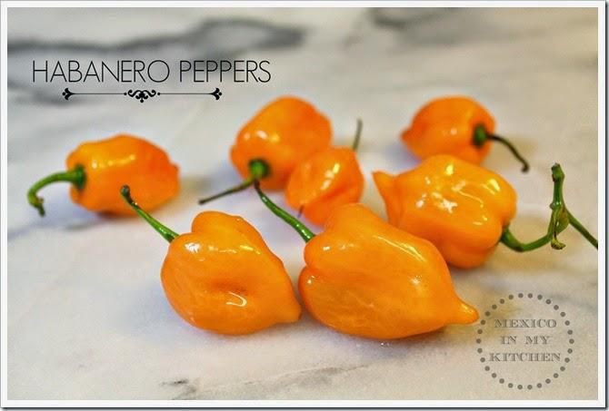 Creamy Habanero Salsa | peppers