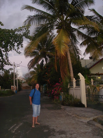 Imagini Mauritius: pe strada, linga pensiune