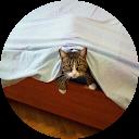 Immagine del profilo di merlotti loriana
