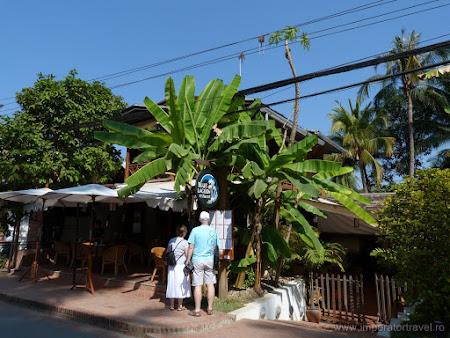 108. restaurant intre palmieri.JPG