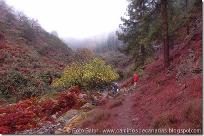 6859 Barranco Andén-Cueva Corcho(Barranco Crespo)