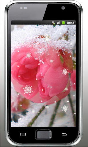 Roses n Snow HD live wallpaper