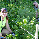 Kamaole 2 workday 9-5-11 003.JPG