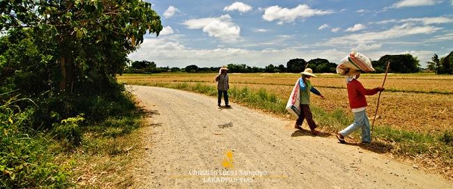 Farmers in the Heat of the Midday Sun of San Rafael, Bulacan