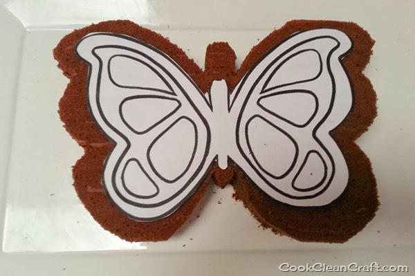 Butterfly Cake (3)