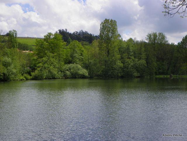 Petit lac photo #1149