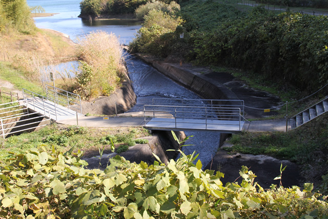 沢からダム湖へと水が流れる