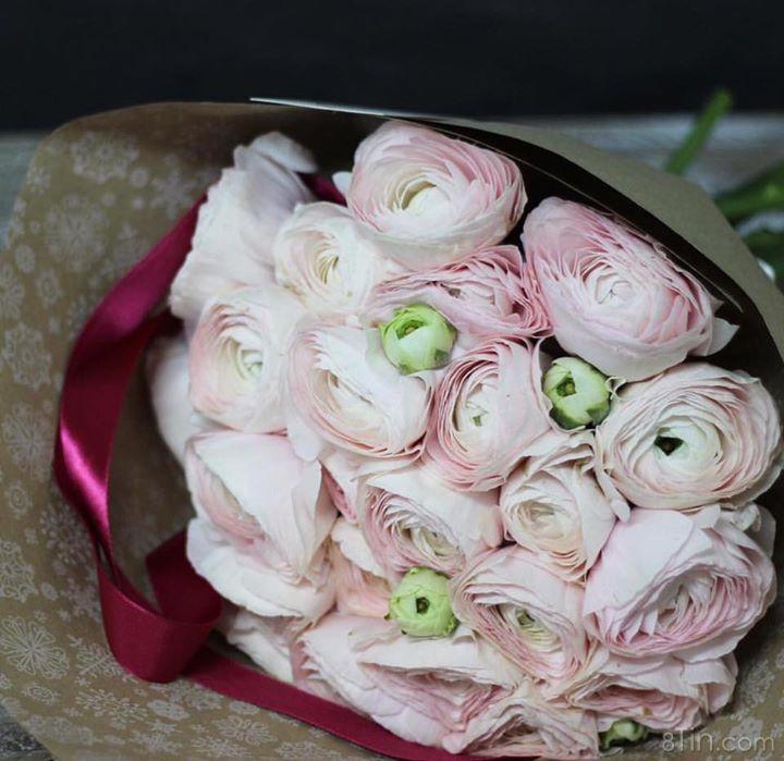 Hoa gì đây nhỉ ? #letoflowers  Các bạn vào link sau