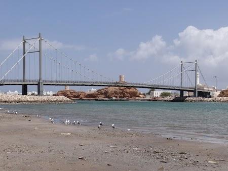 36. Podul din Sur.JPG
